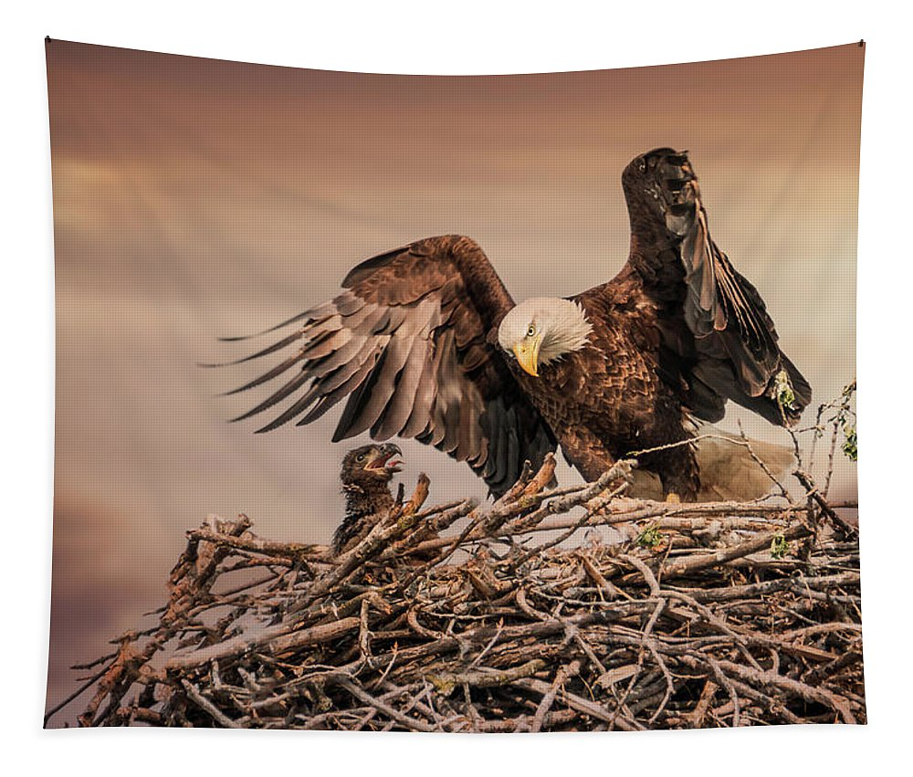 Nest Tapestry featuring the photograph Bald Eagle And Eaglet In Nest by Patti Deters
