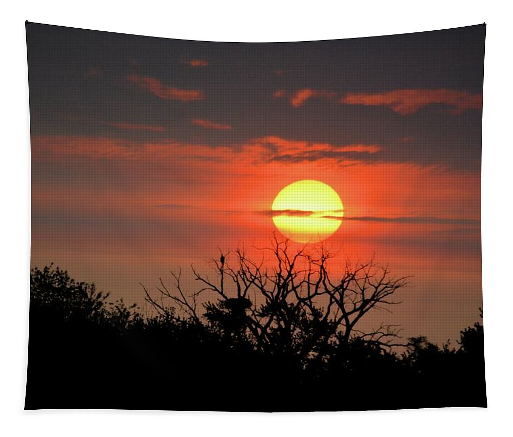 Sunrise Tapestry featuring the photograph Eagle Nest Sunrise by Bonfire Photography