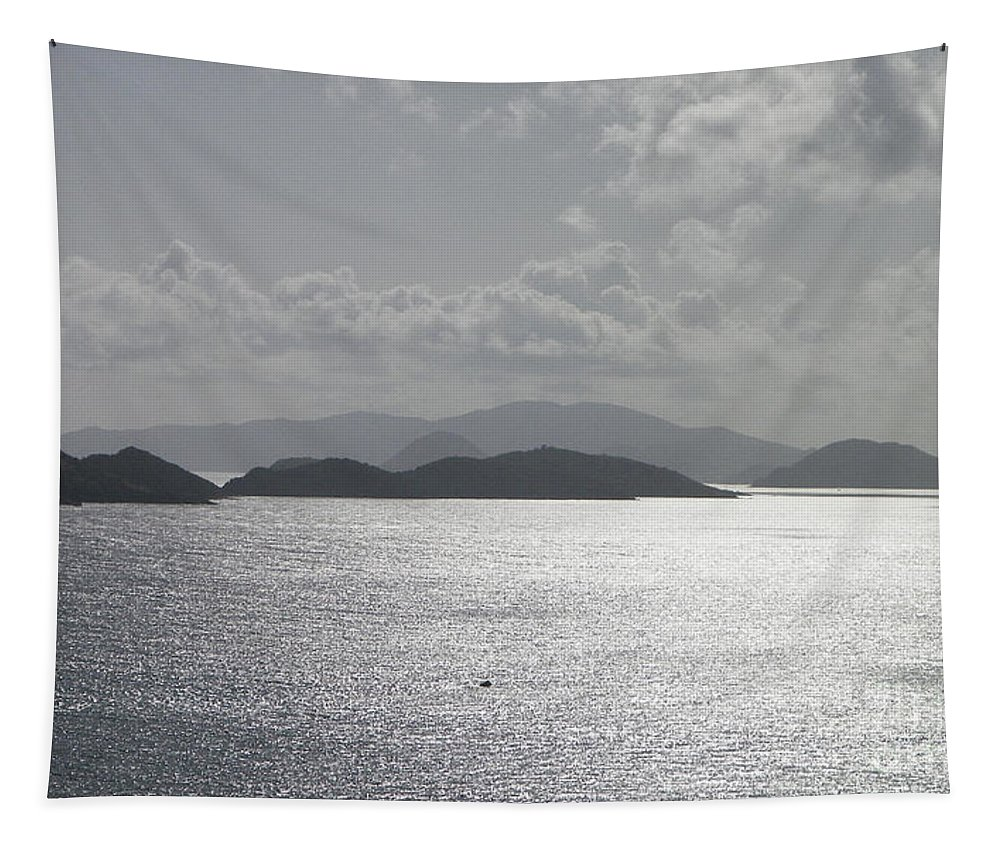 Tropical Tapestry featuring the photograph Early Morning Island View by Gina Sullivan