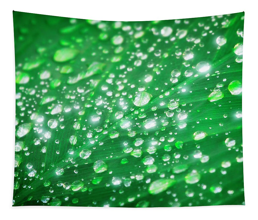 Dew Tapestry featuring the photograph Early Morning Magic by Mark Andrew Thomas