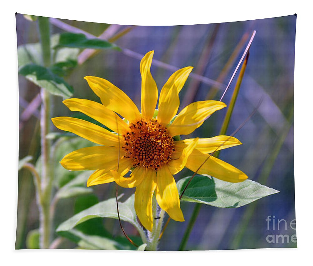 Wild Flower Tapestry featuring the photograph Earth Day Wild Flower by Davids Digits