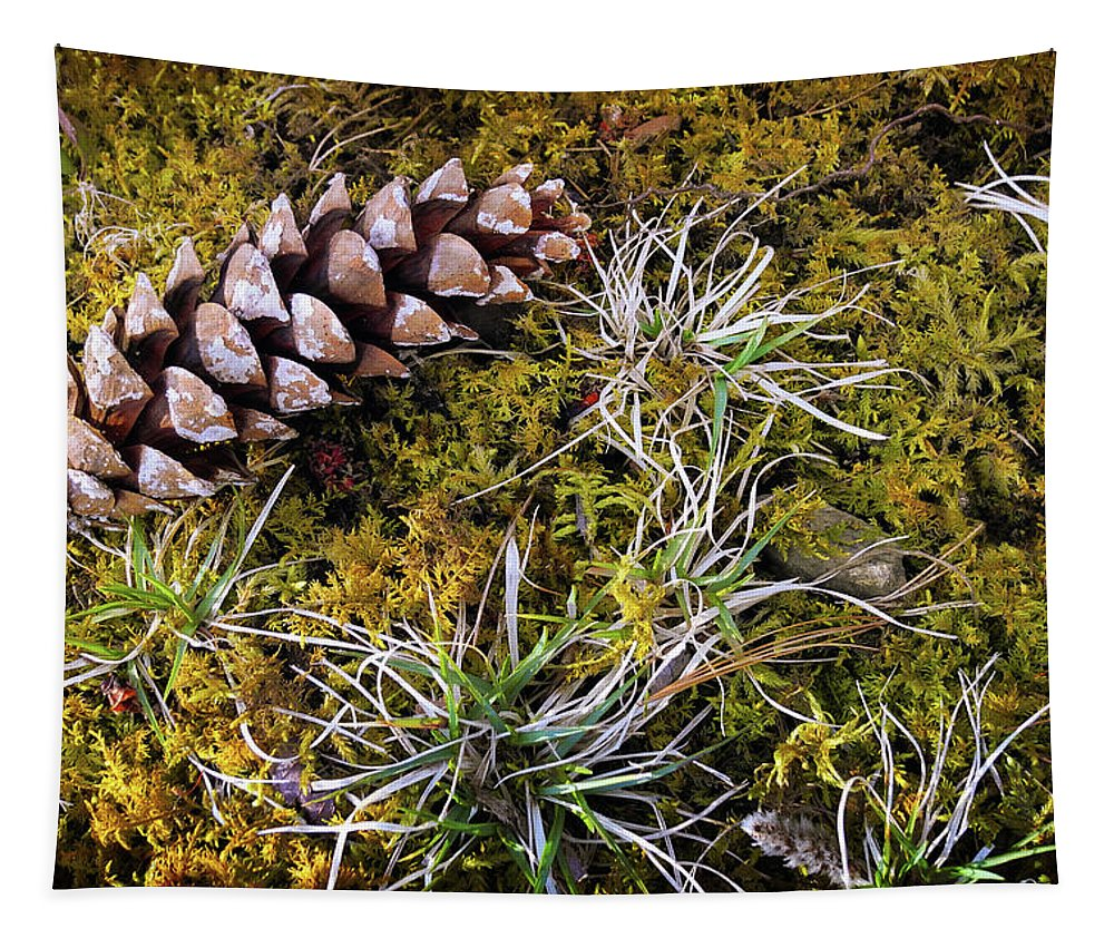 Nature Tapestry featuring the photograph Earth Hour by Christina Rollo