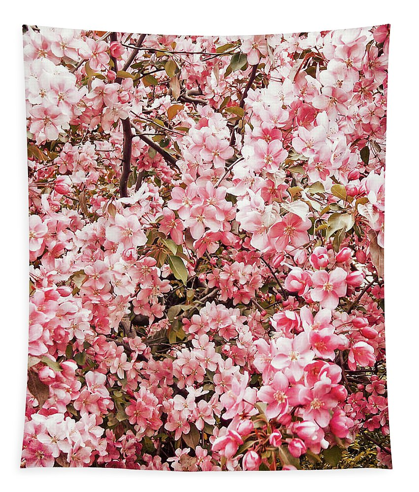 Tree Tapestry featuring the photograph Earth Tones Apple Blossoms by Aimee L Maher ALM GALLERY