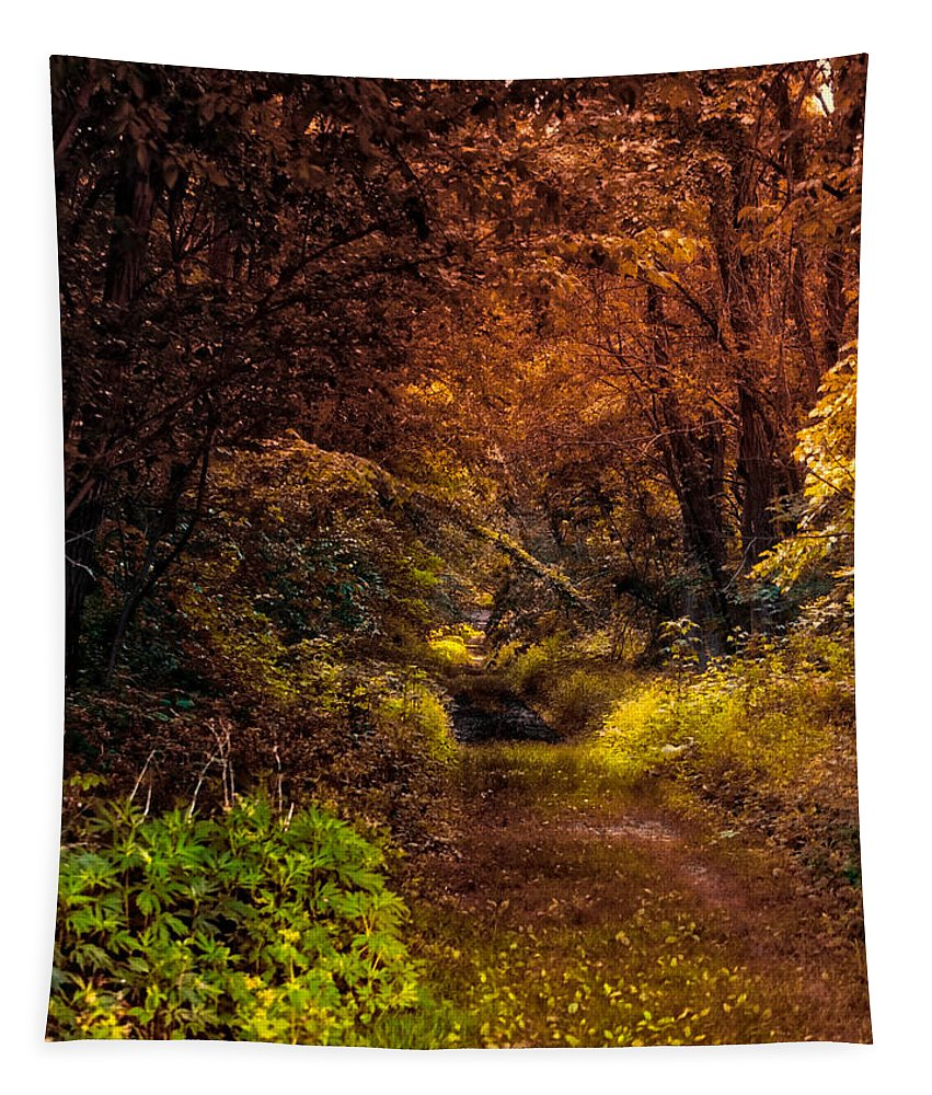 Autumn Tapestry featuring the photograph Earth Tones In A Illinois Woods by Thomas Woolworth
