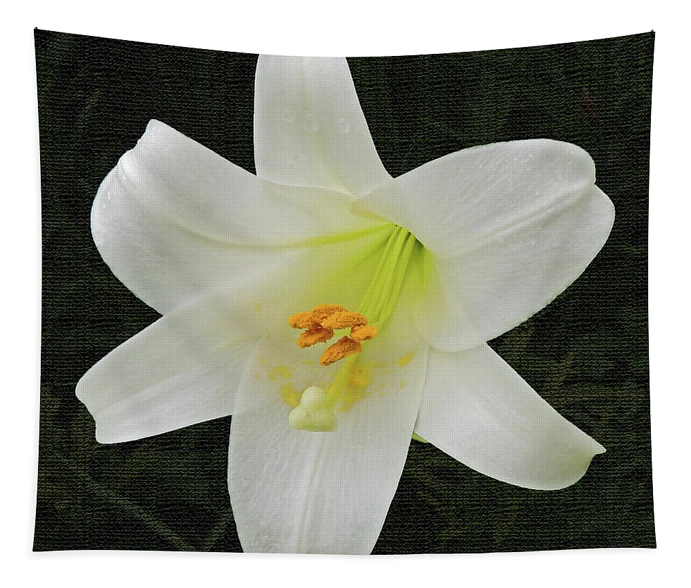Flower Tapestry featuring the photograph Easter Lily With Black Background by Marian Bell