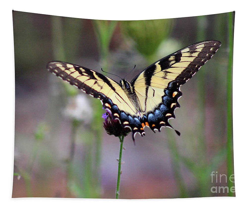 Butterfly Tapestry featuring the photograph Eastern Tiger Swallowtail Butterfly In Garden 2016 by Karen Adams