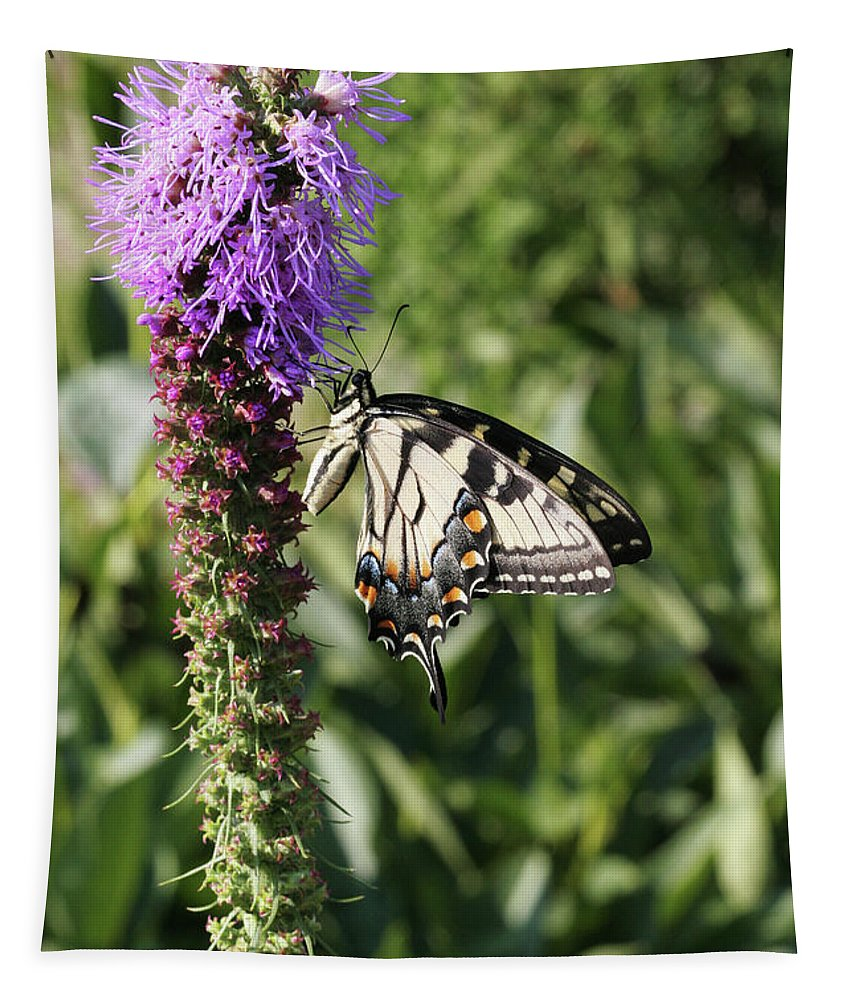Butterfly Tapestry featuring the photograph Eastern Tiger Swallowtail Butterfly by Judy Whitton