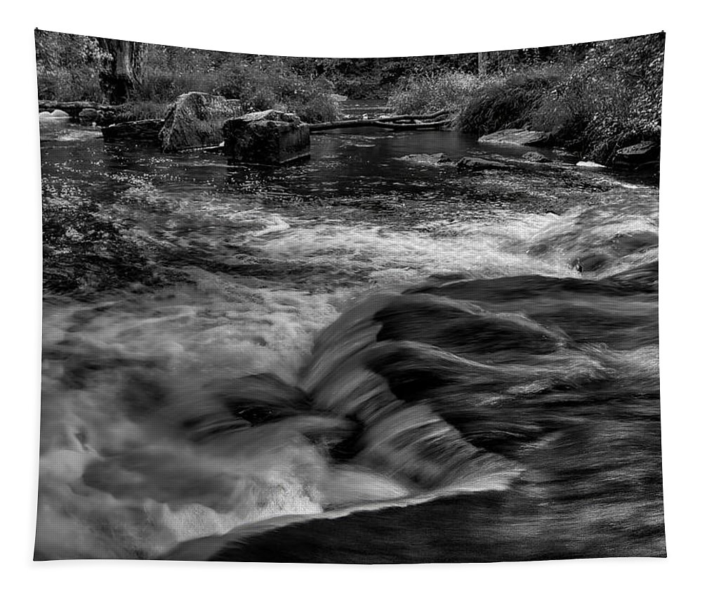 Dale Kauzlaric Tapestry featuring the photograph Eau Claire Dells Black And White Flow by Dale Kauzlaric