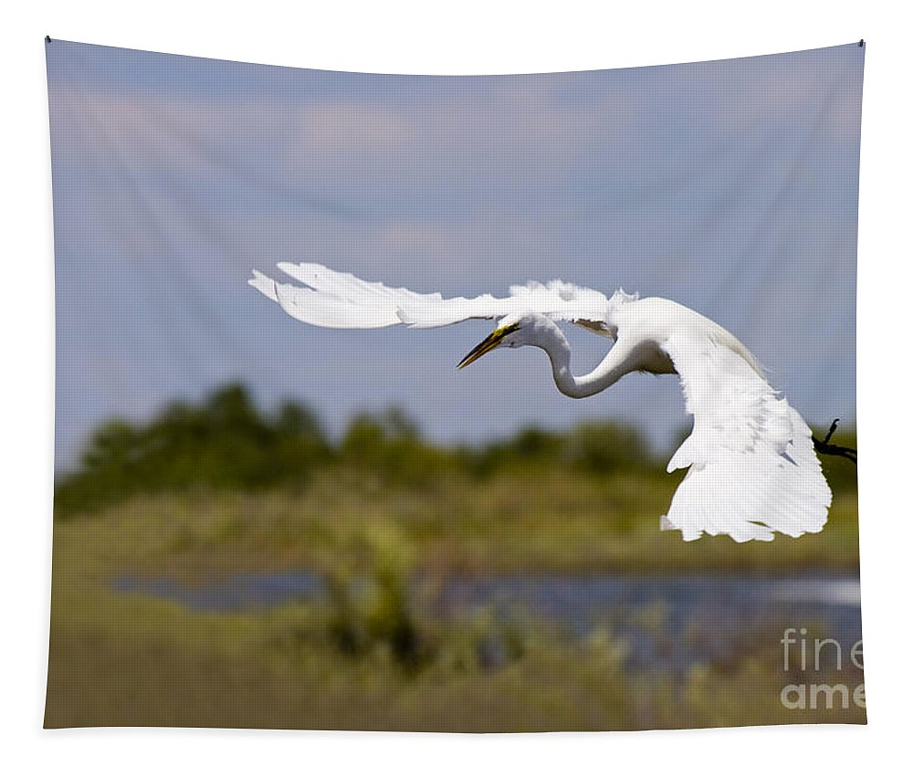 Egret Tapestry featuring the photograph Egret Ballet by Mike Dawson