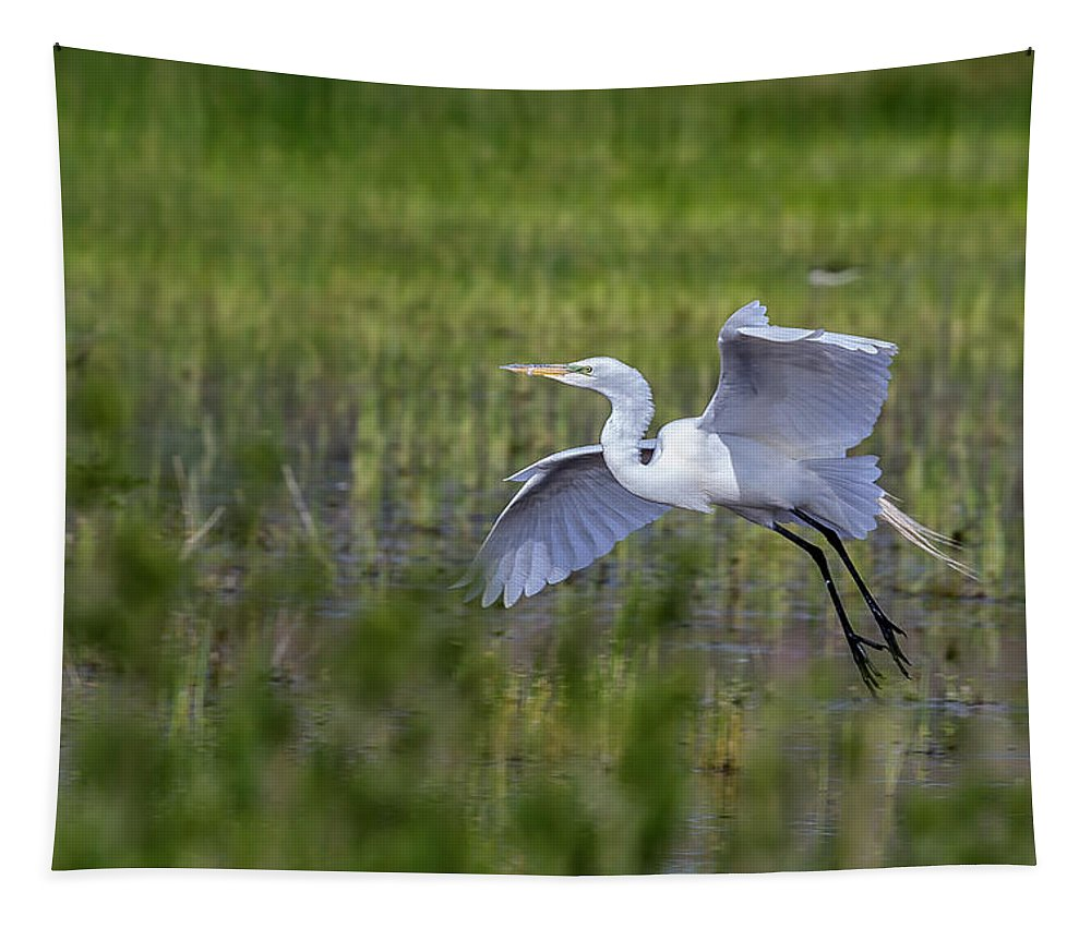 Great Egret Tapestry featuring the photograph Egret In Flight by Belinda Greb