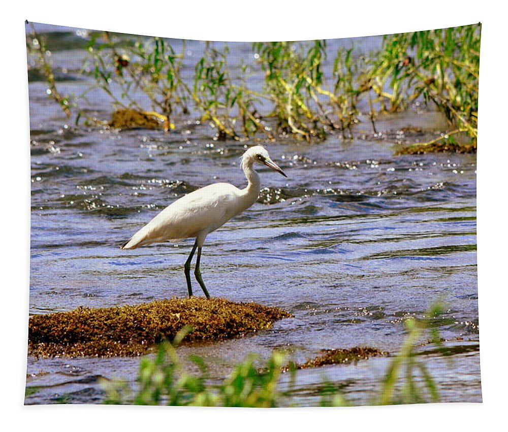 Egret On A Rock Tapestry featuring the photograph Egret On A Rock by Lisa Wooten