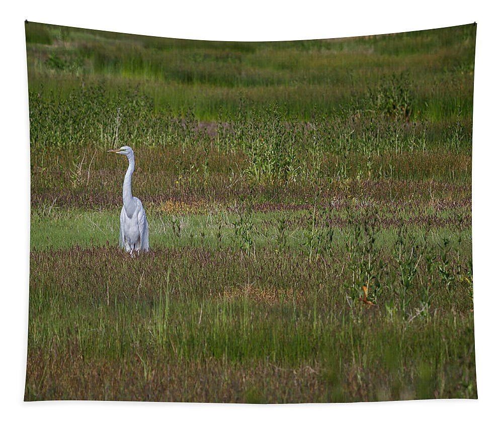 Great Egret Tapestry featuring the photograph Egrets In A Field by Belinda Greb