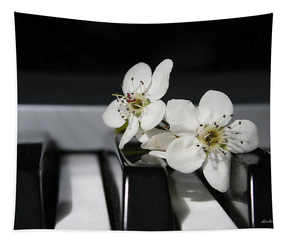 Still Life Photography Tapestry featuring the photograph Elegant by Linda Sannuti
