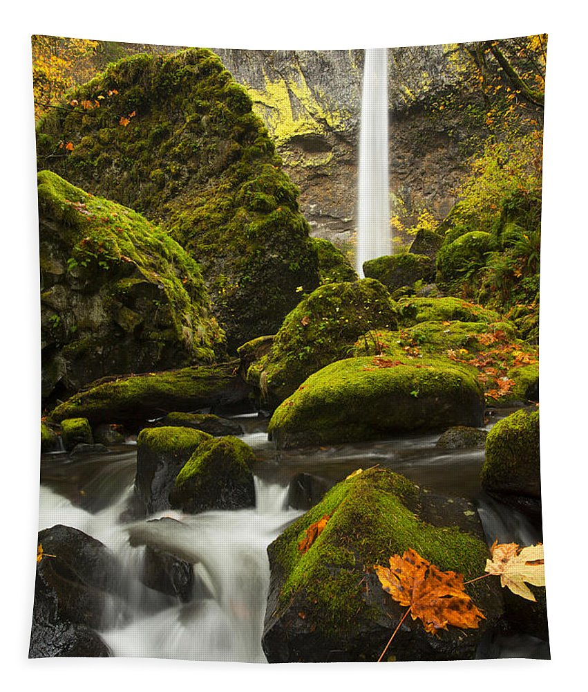 Elowah Falls Tapestry featuring the photograph Elowah Autumn by Mike Dawson