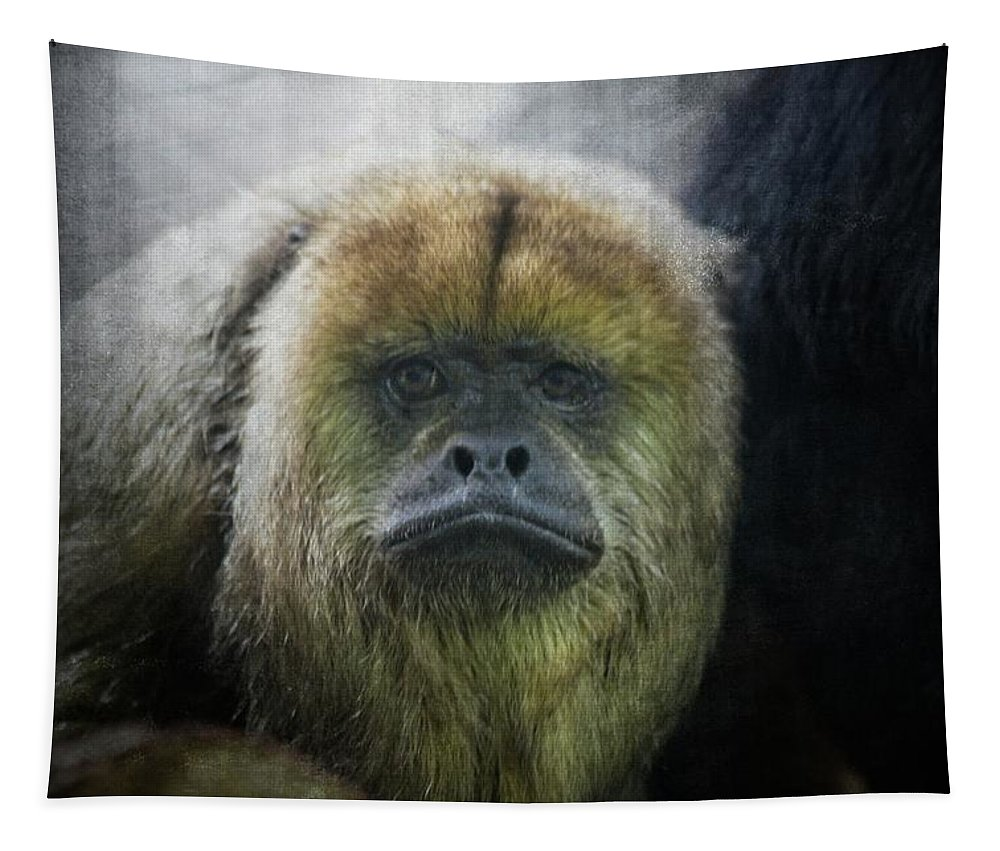 Howler Monkey Tapestry featuring the photograph What A Face by Karol Livote