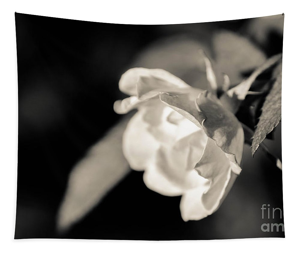 Single Tapestry featuring the photograph Emotive by Andrea Anderegg