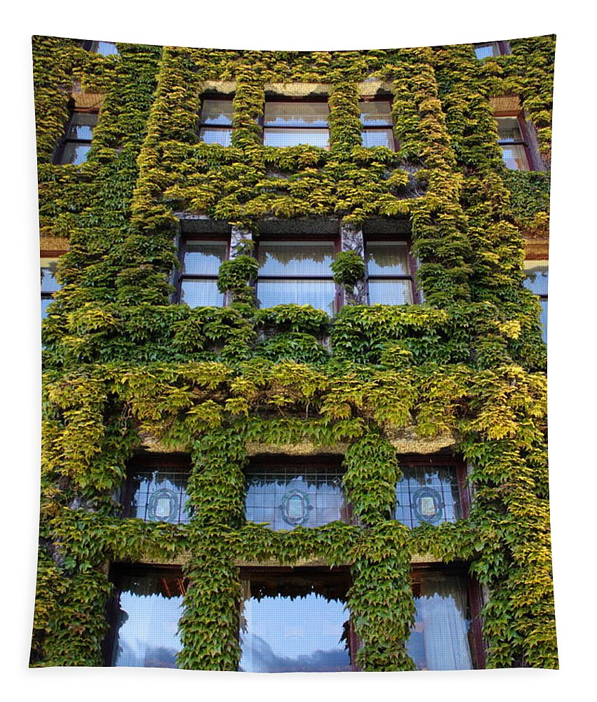 Empress Hotel Tapestry featuring the photograph Empress Hotel Windows by Carol Groenen