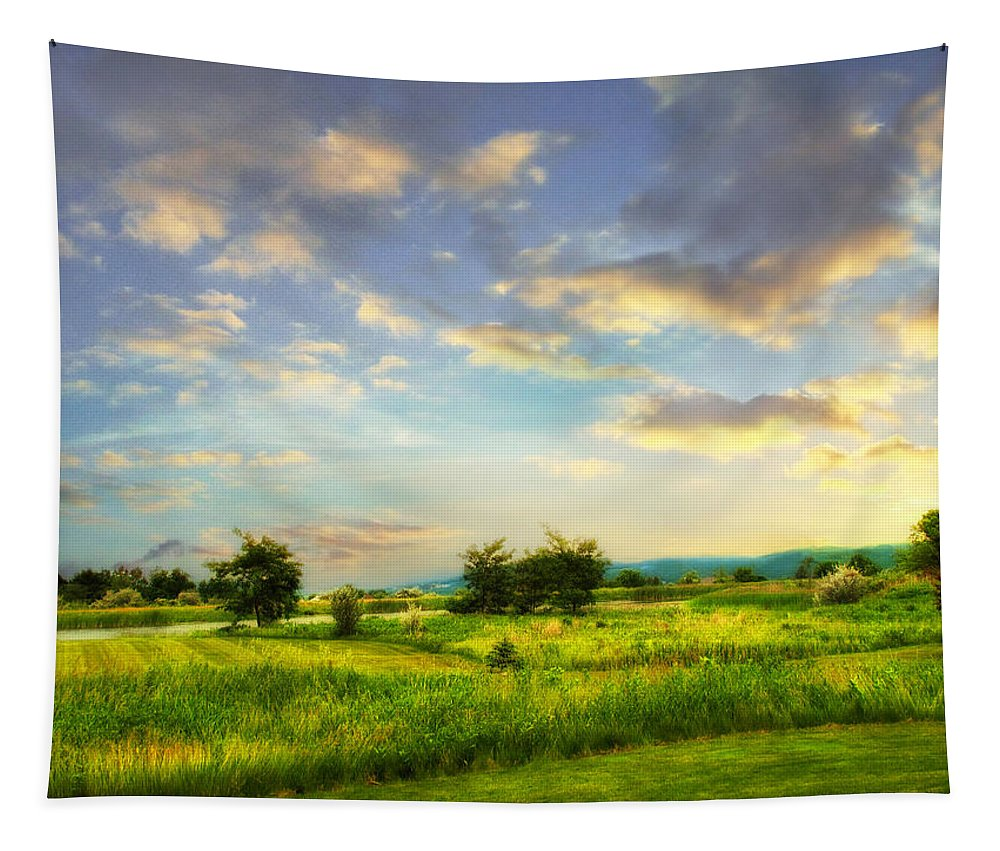Landscape Tapestry featuring the photograph Enchanted Valley by Jessica Jenney