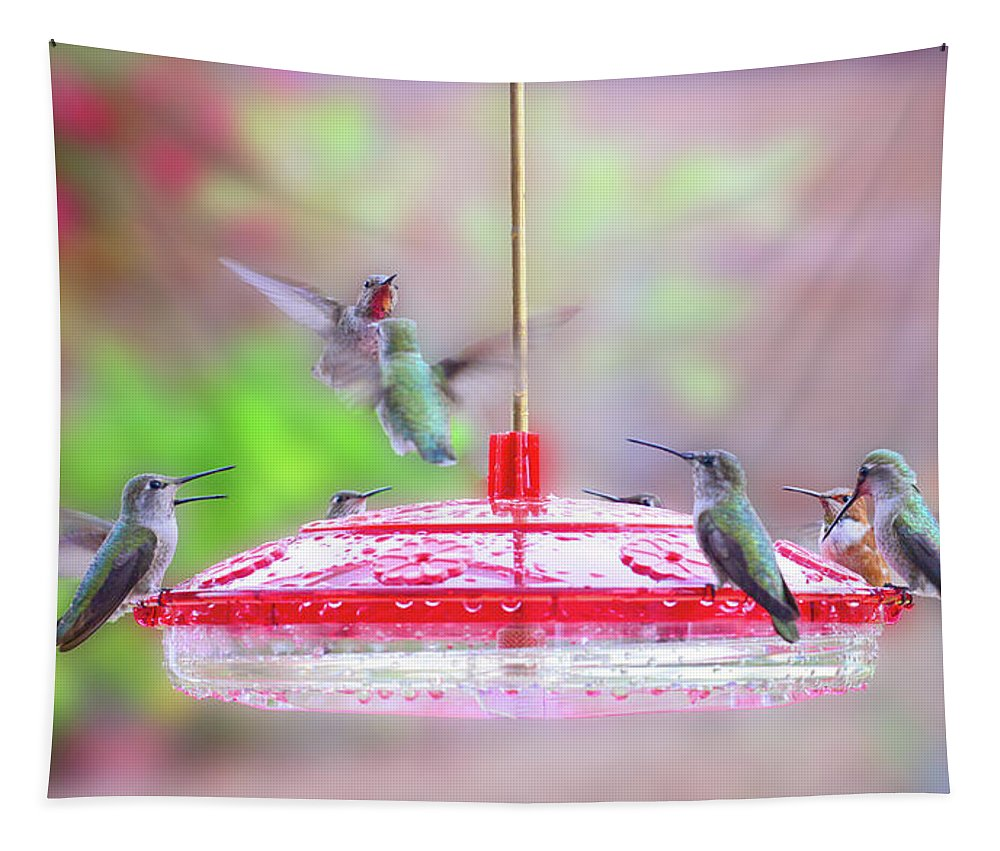 Hummingbirds Tapestry featuring the photograph Encounter At The Feeder by Lynn Bauer