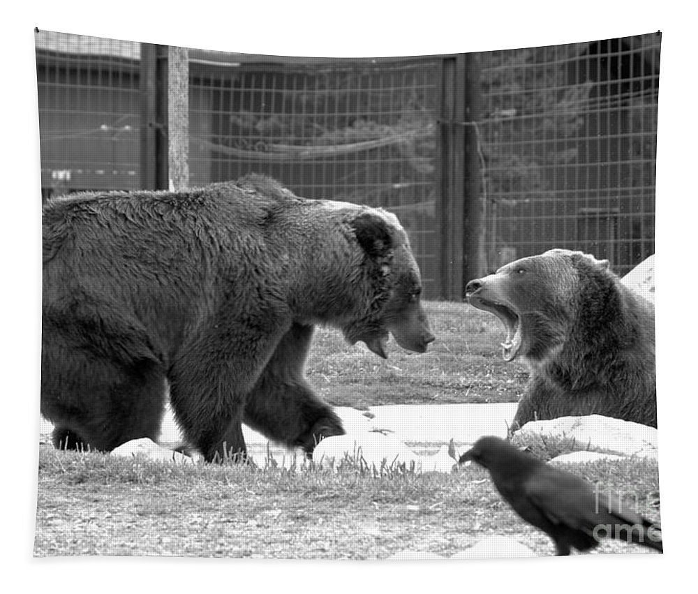 Grizzly Bears Tapestry featuring the photograph Encroaching On My Space Black And White by Adam Jewell