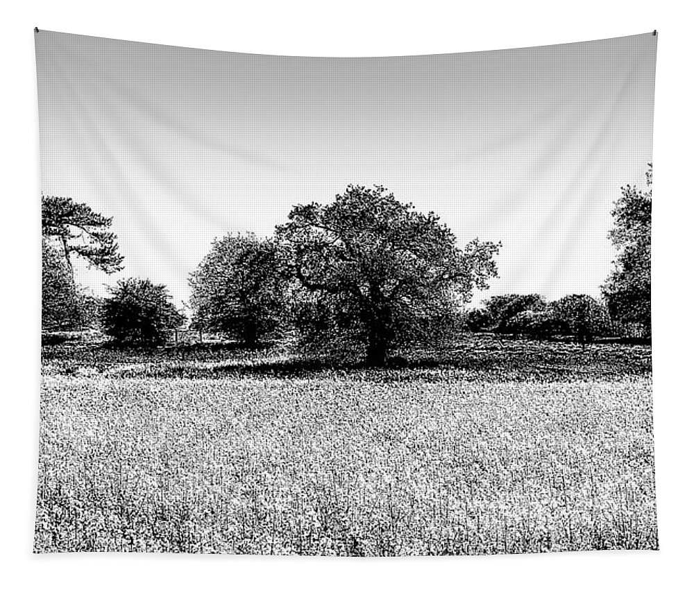 Oil Seed Rape Tapestry featuring the photograph English Farm Art by David Pyatt