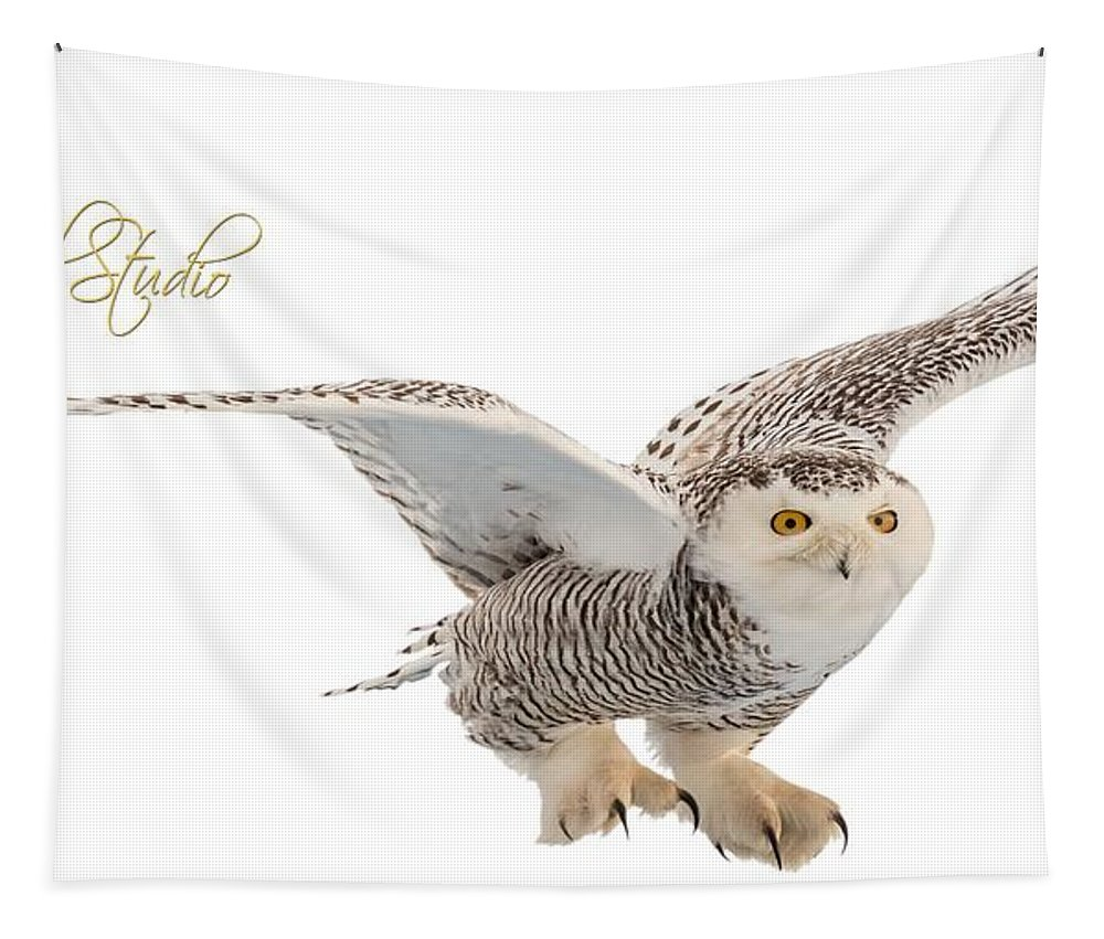 Snowy Owl Tapestry featuring the photograph eRegal Studio Snowy Owl graphic by Everet Regal