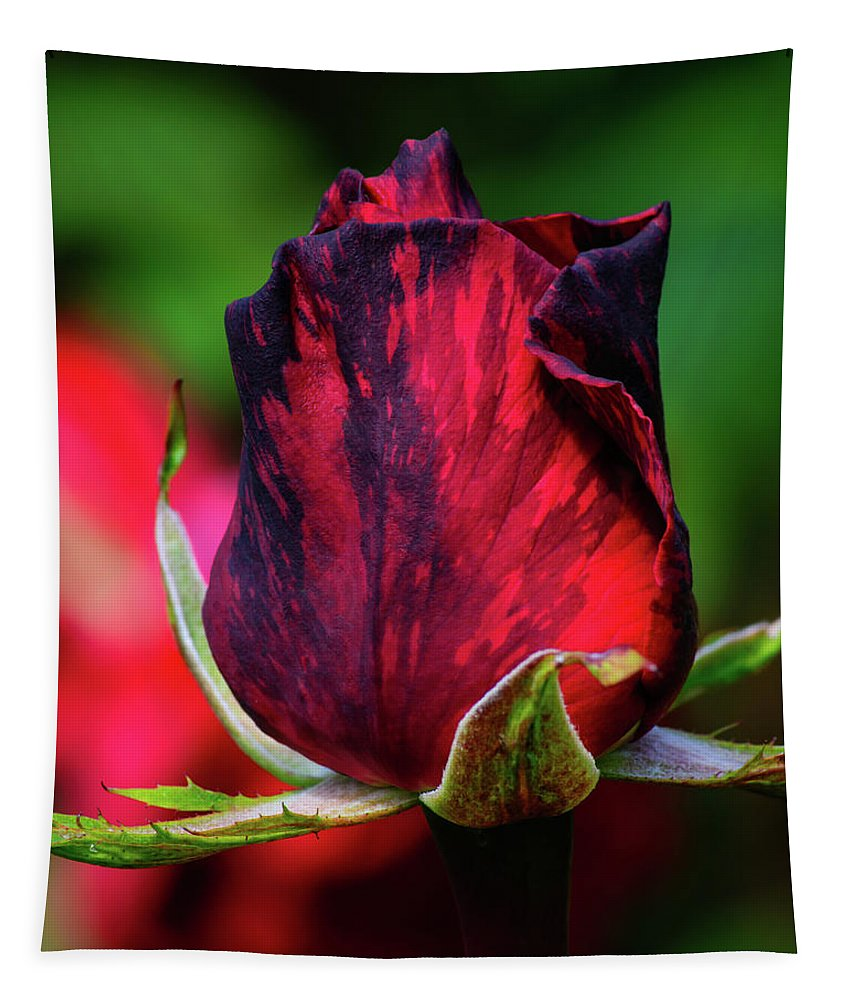 Rose Tapestry featuring the photograph Eternal Love Rose by Tikvah's Hope