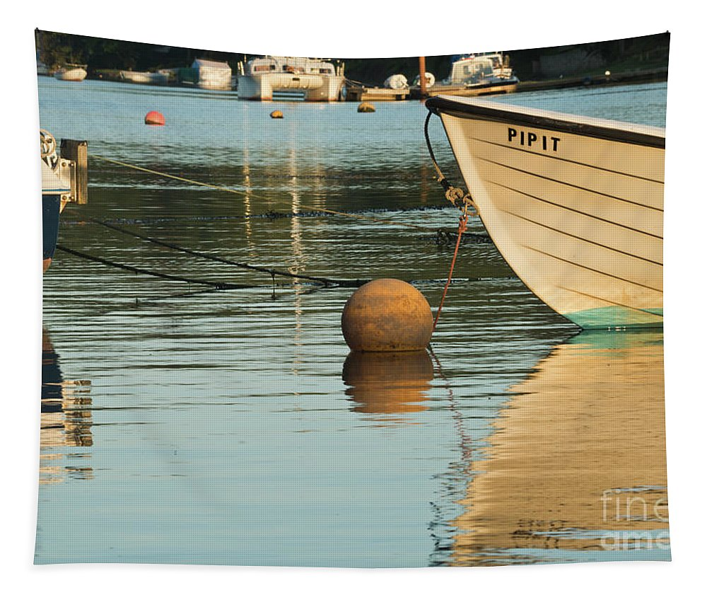 Mylor Creek Tapestry featuring the photograph Evening Light On Pipit by Terri Waters