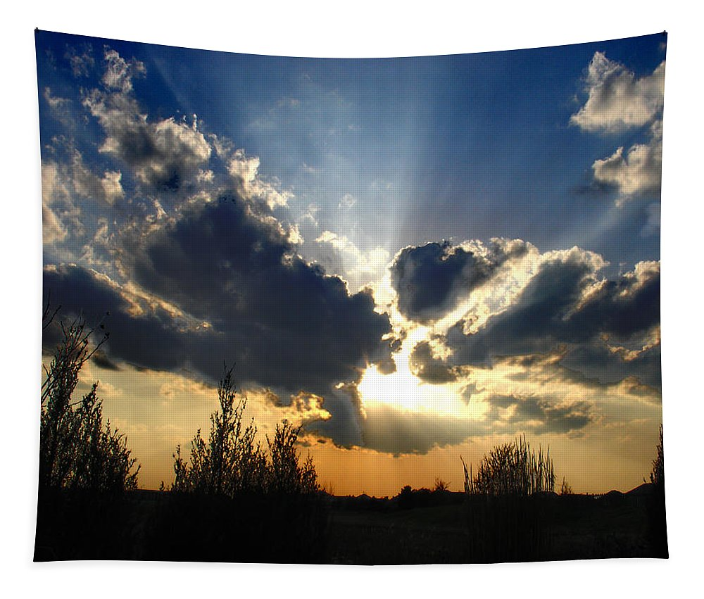 Landscape Tapestry featuring the photograph Evening Sky by Steve Karol