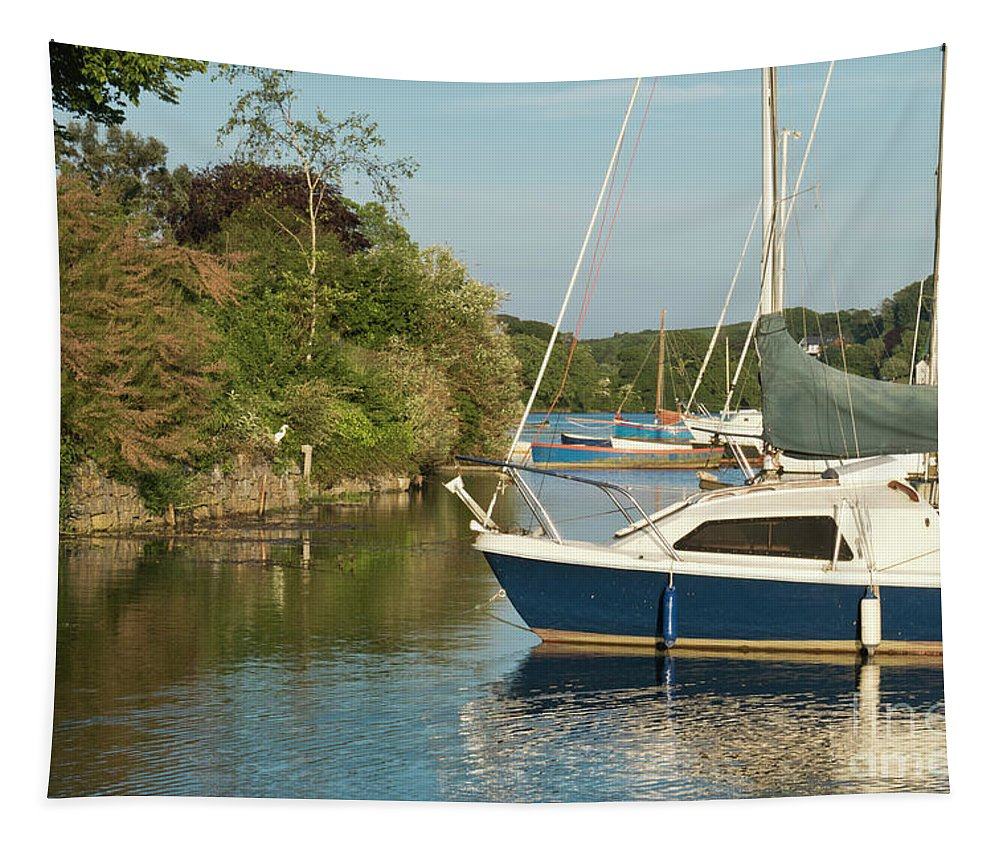 Mylor Creek Tapestry featuring the photograph Evening Visitor by Terri Waters
