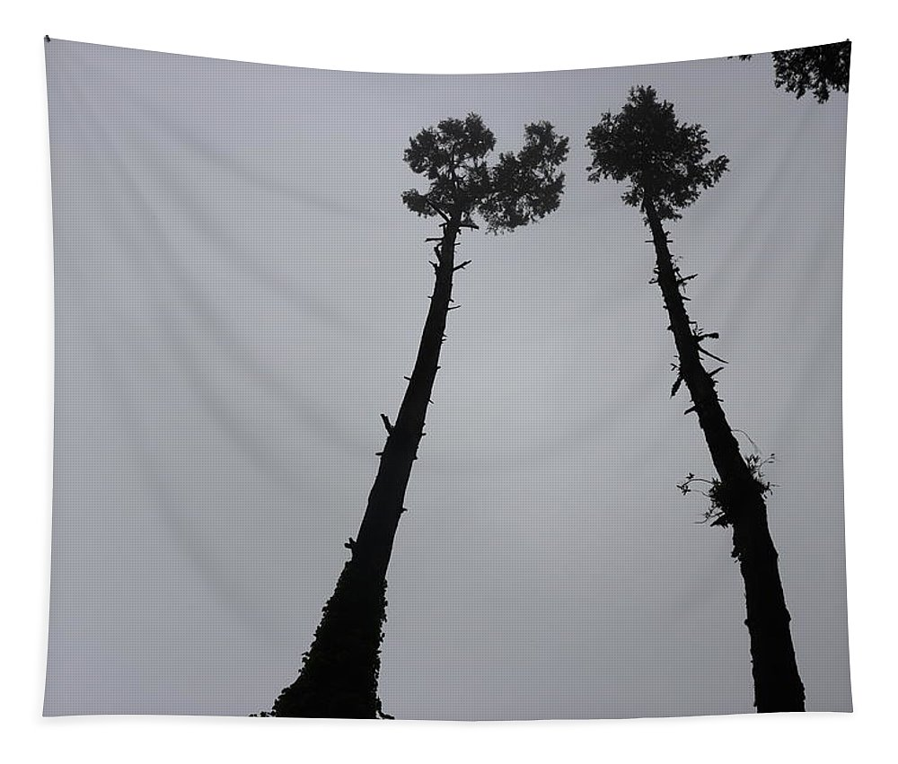 Exceed Tapestry featuring the photograph Exceeding by Nilu Mishra