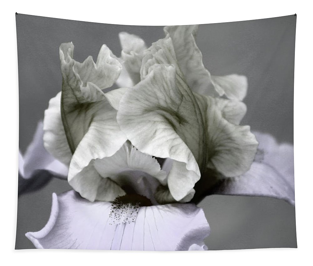 Desaturated Tapestry featuring the photograph Faded Iris 6622 H_5 by Steven Ward