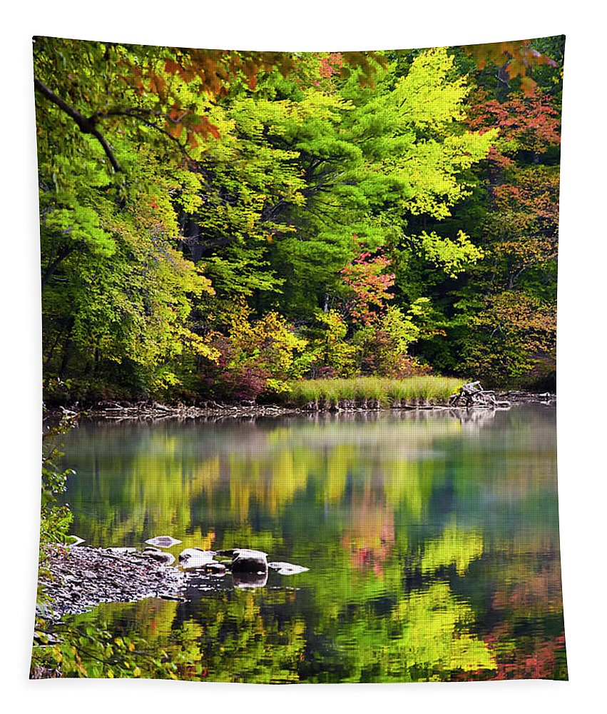 Fall Foliage Tapestry featuring the photograph Fall Foliage Reflection by Christina Rollo