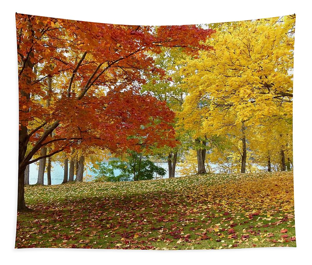 Kaloya Park Tapestry featuring the photograph Fall In Kaloya Park 9 by Will Borden