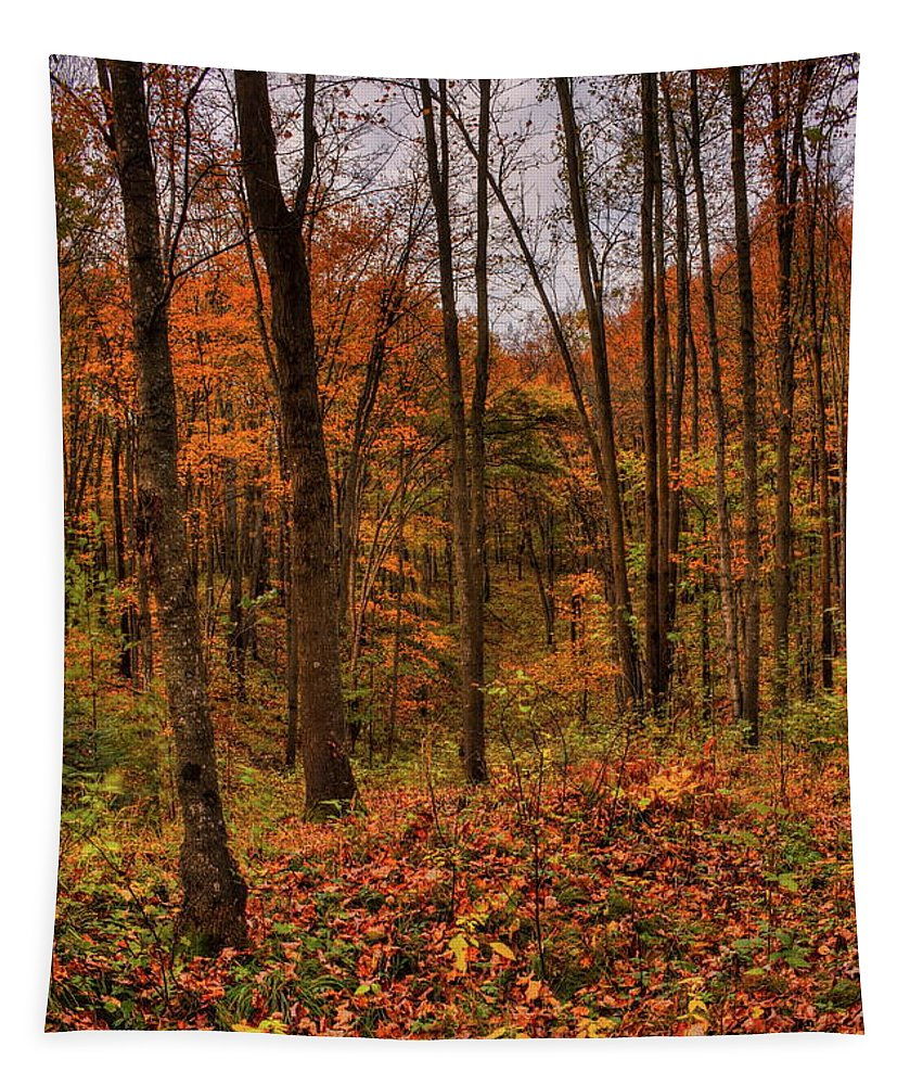 Dale Kauzlaric Tapestry featuring the photograph Fall On The Ice Age Trail by Dale Kauzlaric
