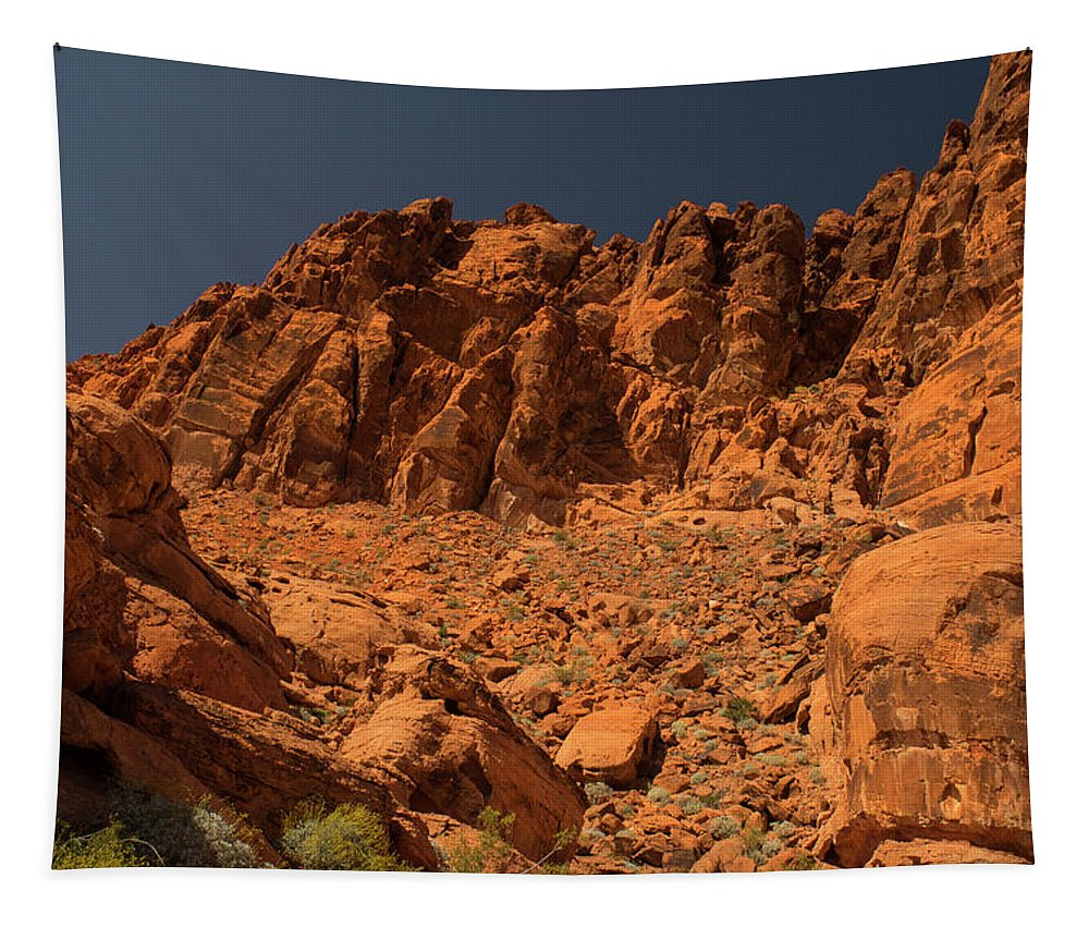 Landscape Tapestry featuring the photograph Fantastic Landscape Valley Of Fire by Frank Wilson