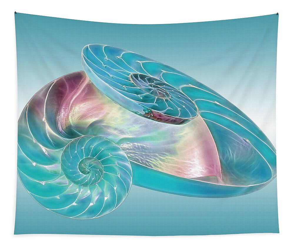 Nautilus Shell Tapestry featuring the photograph Fantasy Seashells Entwined by Gill Billington