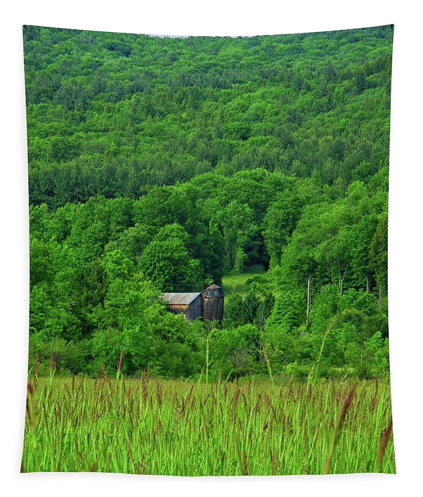 Farm On The Hillside Tapestry featuring the photograph Farm On The Hillside by Raymond Salani III