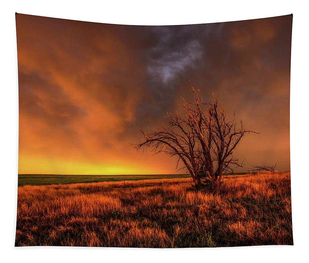 Oklahoma Tapestry featuring the photograph Fascinations - Warm Light And Rumbles Of Thunder In The Oklahoma Panhandle by Southern Plains Photography