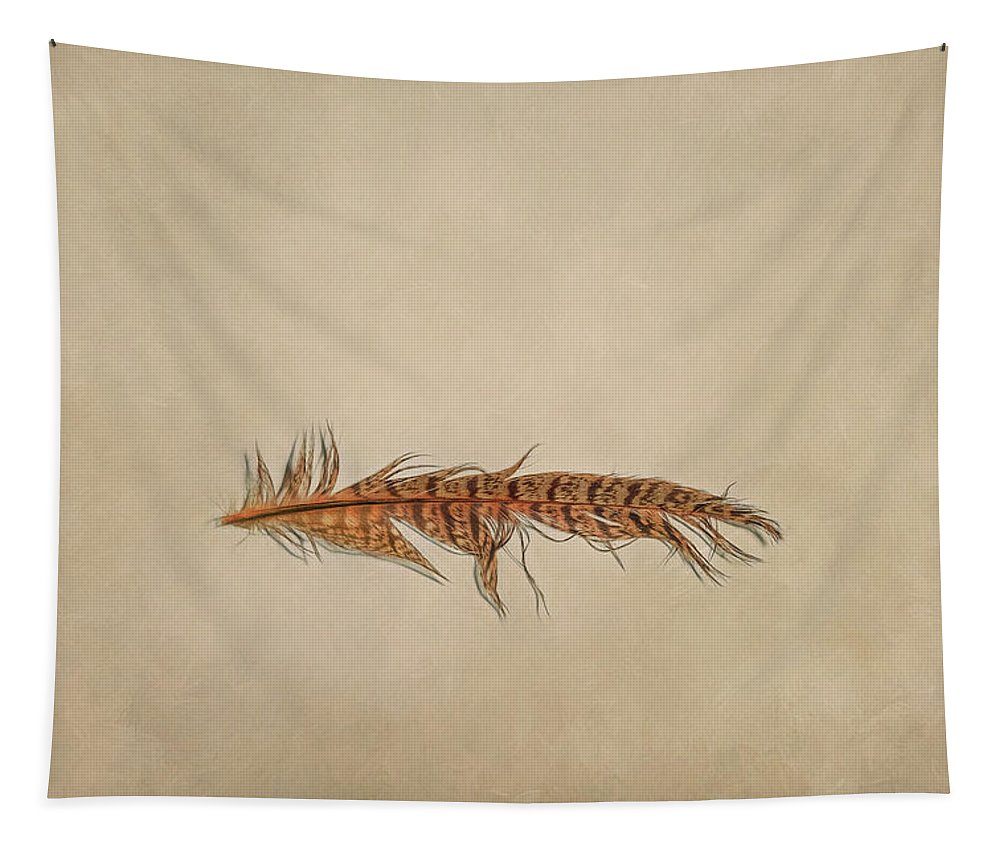 Scott Norris Photography Tapestry featuring the photograph Feather 2 by Scott Norris