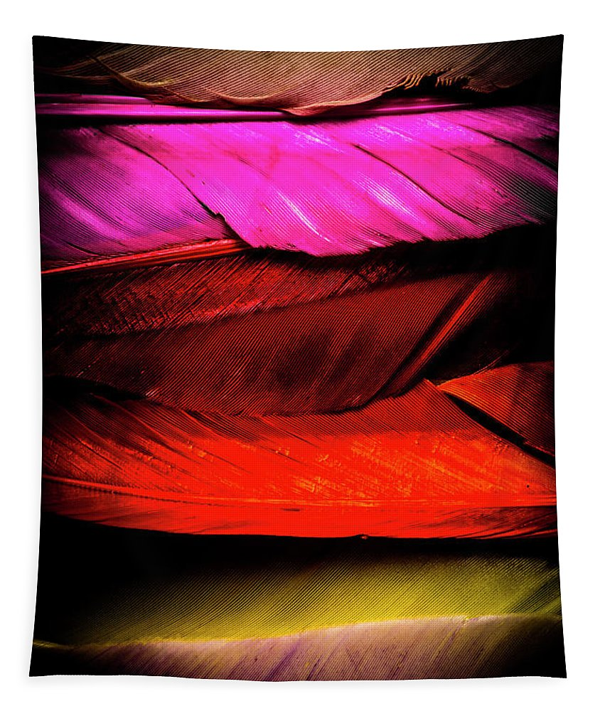 Colorful Tapestry featuring the photograph Feathers Of Rainbow Color by Jorgo Photography - Wall Art Gallery