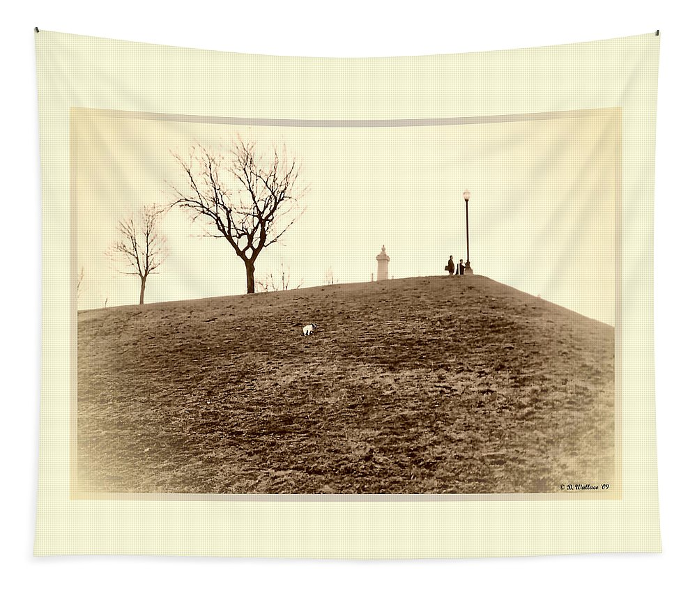 2d Tapestry featuring the photograph Federal Hill by Brian Wallace