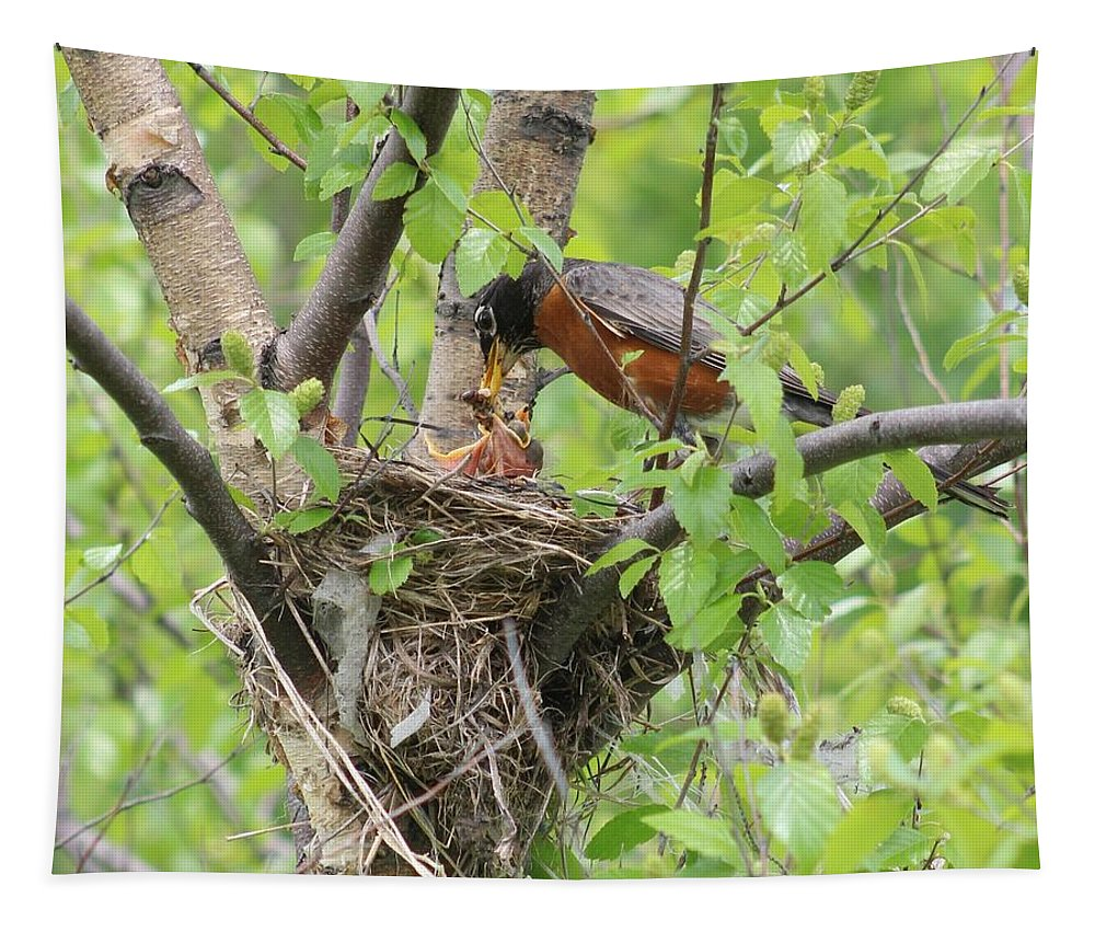 Karen Silvestri Tapestry featuring the photograph Feeding Time by Karen Silvestri