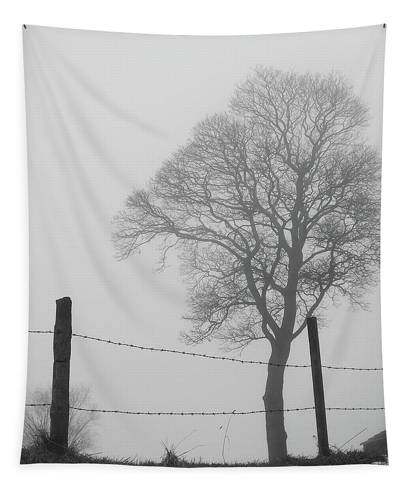 Snow Tapestry featuring the photograph Fence And Fog by Philip Openshaw