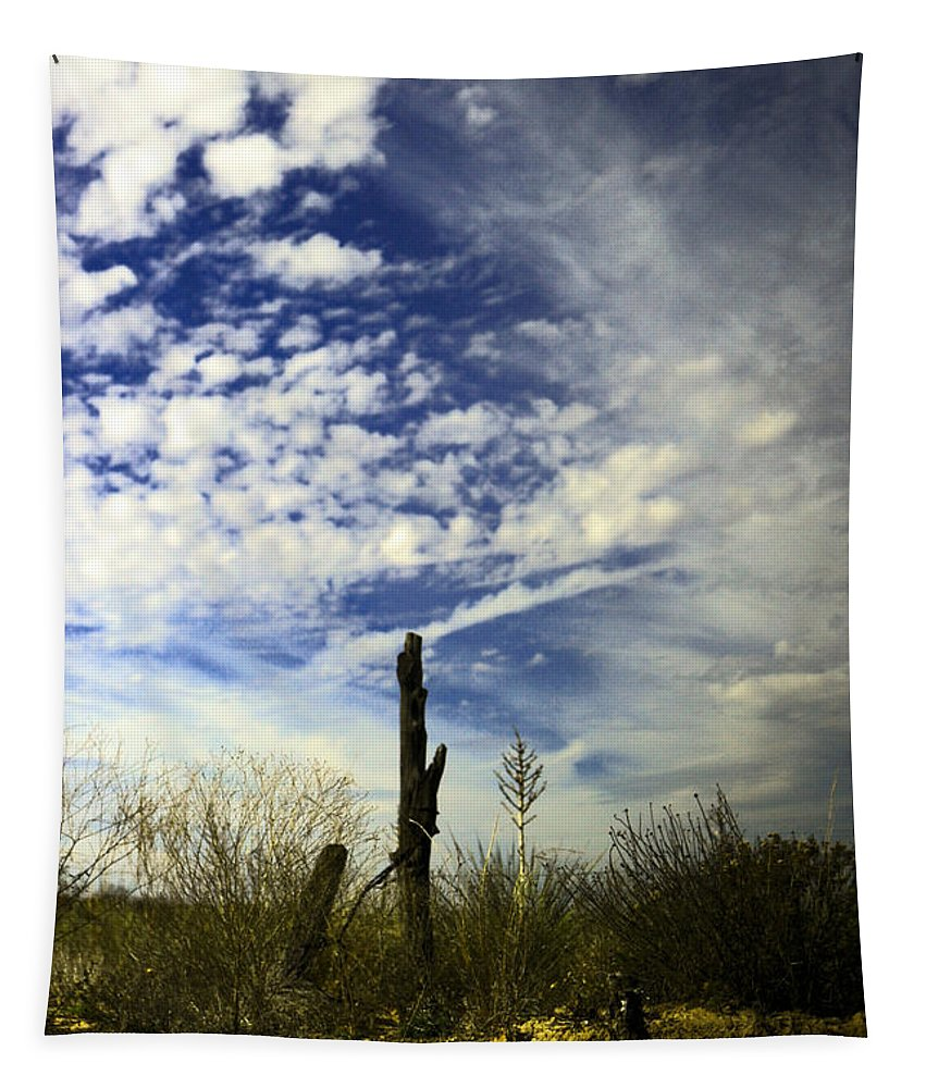 Sky Tapestry featuring the photograph Fence Post And New Mexico Sky by Jeff Swan