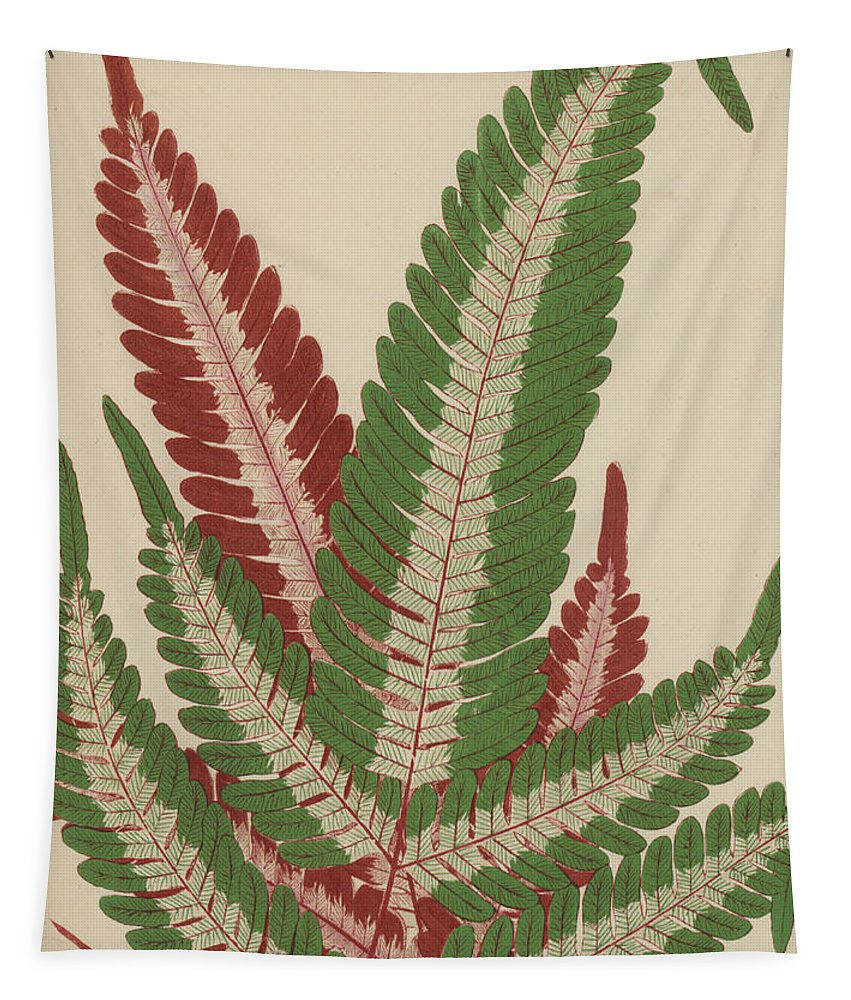 Fern Tapestry featuring the painting Fern by English School