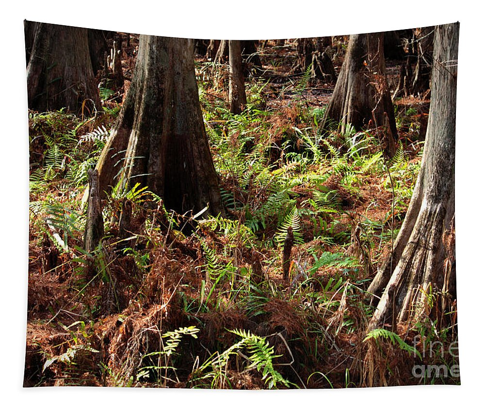 Ferns Tapestry featuring the photograph Fern Forest Floor by Carol Groenen