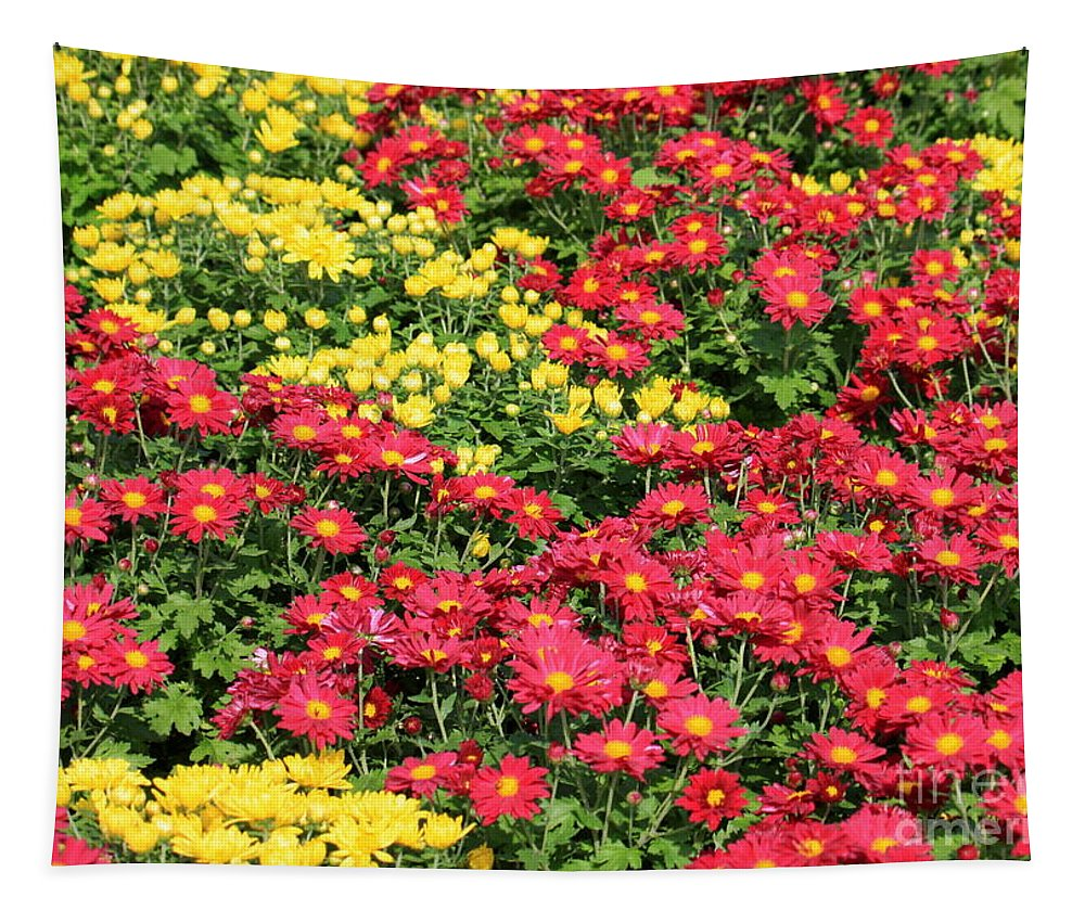Red And Yellow Flowers Tapestry featuring the photograph Field Of Red And Yellow Flowers by Carol Groenen