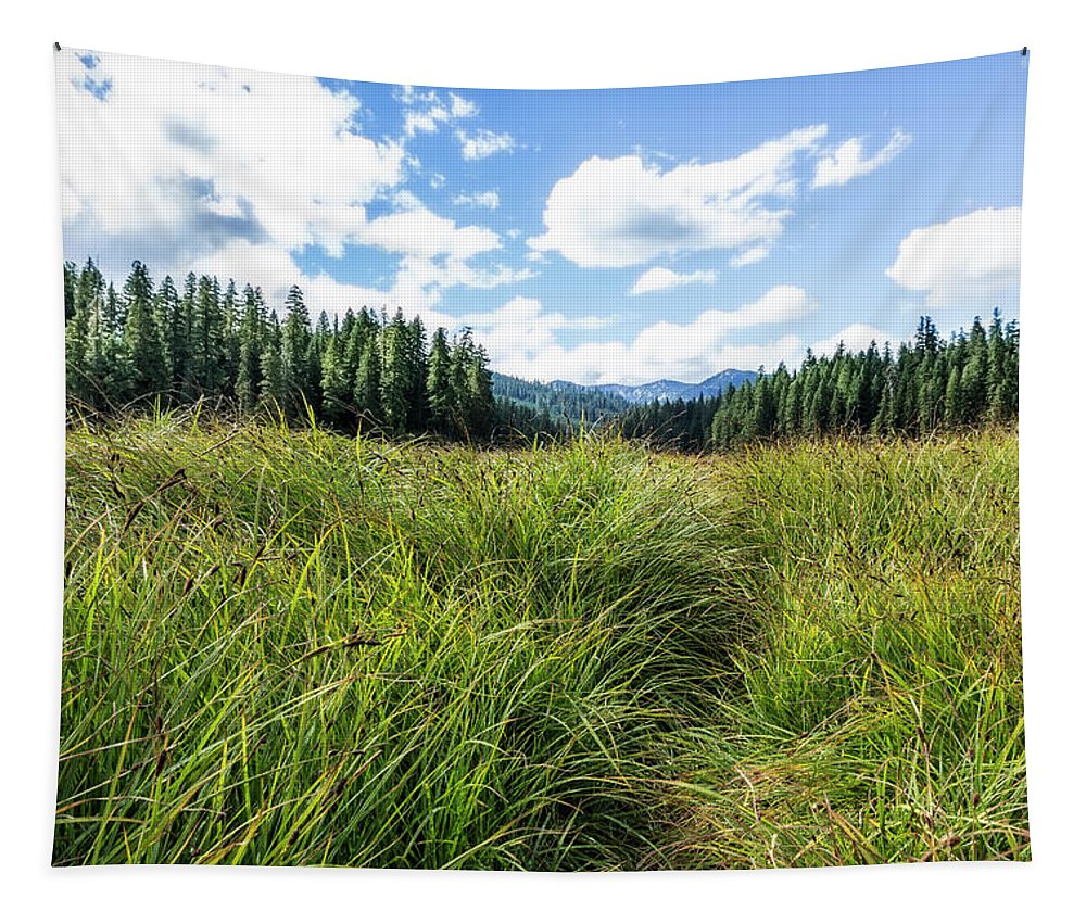 Meadow Tapestry featuring the photograph Finding A Way by Belinda Greb