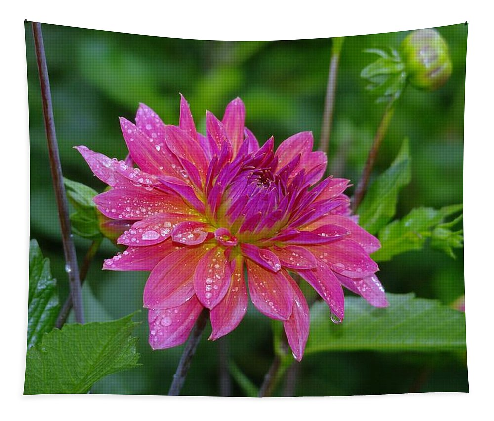Flowers Tapestry featuring the photograph Fire And Rain by Jeff Swan